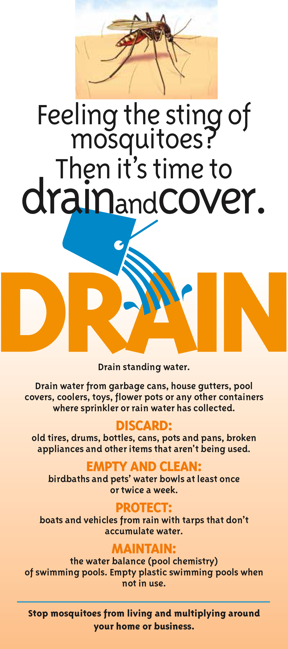 drain-and-cover-eng-1